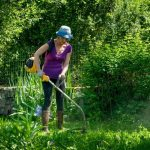 Should you maintain the garden yourself or outsource the work?