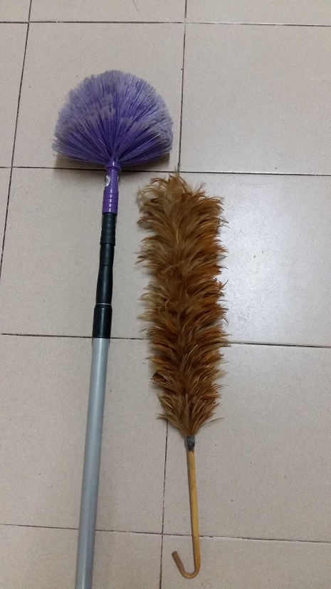 Cleaning using feather duster